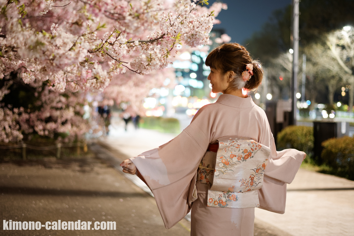 4-April-2017@Chidoriguchi cherry blossoms hanami light up at night time